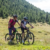 Mountainbike Region - Mountainbiken im Salzburger Lungau