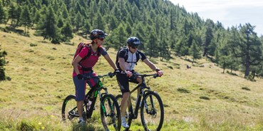 Mountainbikestrecken - Biketransport: Bike-Shuttle - Lungau - Mountainbiken im Salzburger Lungau