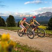 Mountainbike Region - Dolomiten - Eggental