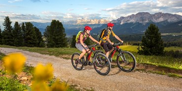 Mountainbikestrecken - Biketransport: Bergbahnen - Südtirol - Bozen - Dolomiten - Eggental